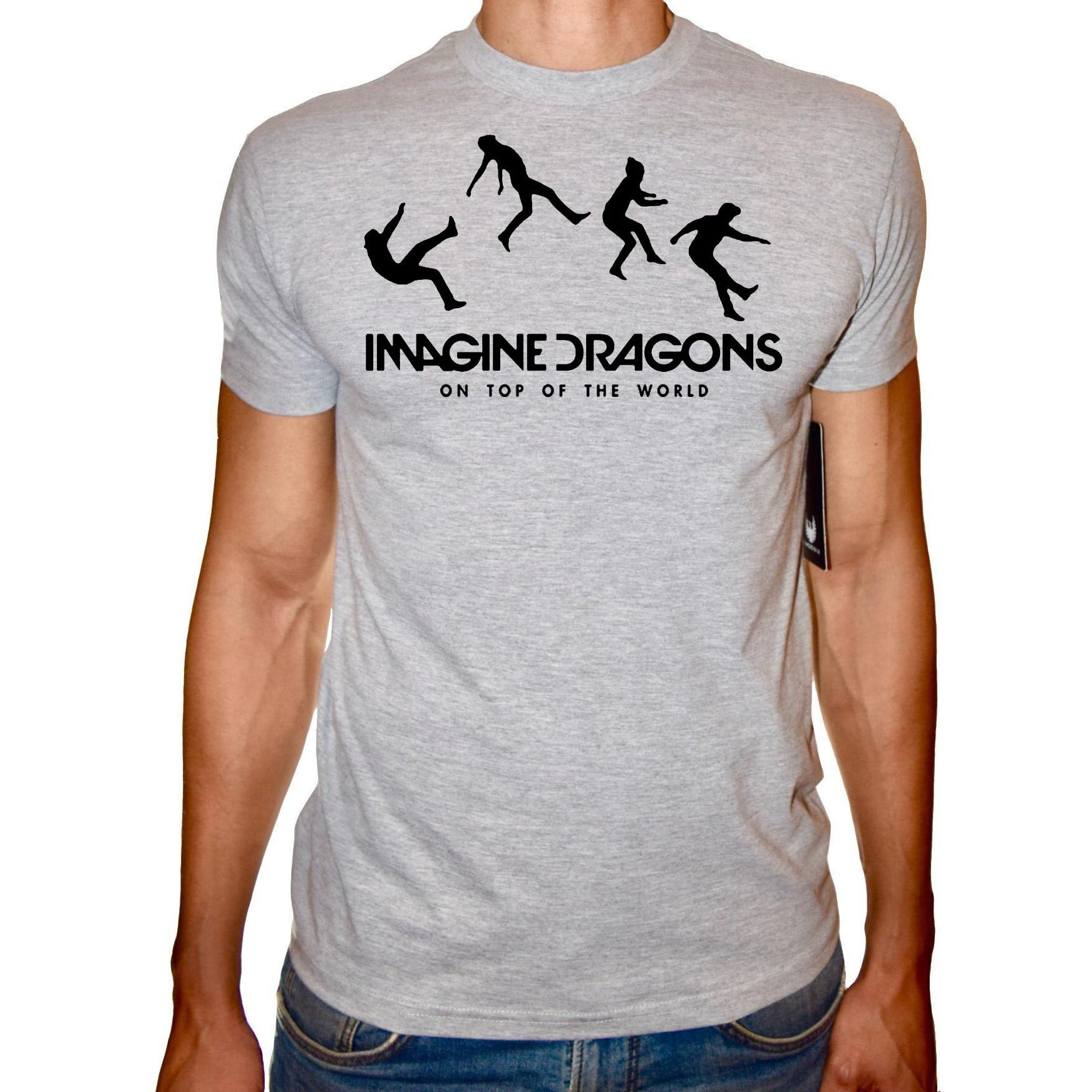 Phoenix GREY Round Neck Printed T-Shirt Men (Imagine dragons )