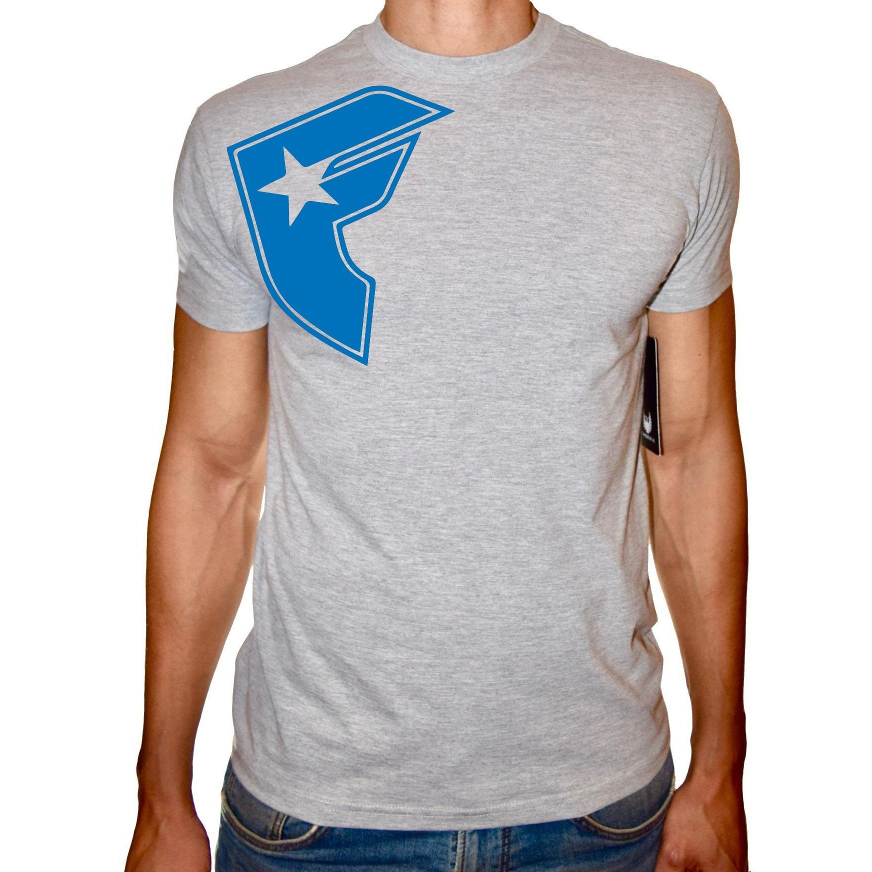 Phoenix GREY Round Neck Printed T-Shirt Men(F star)