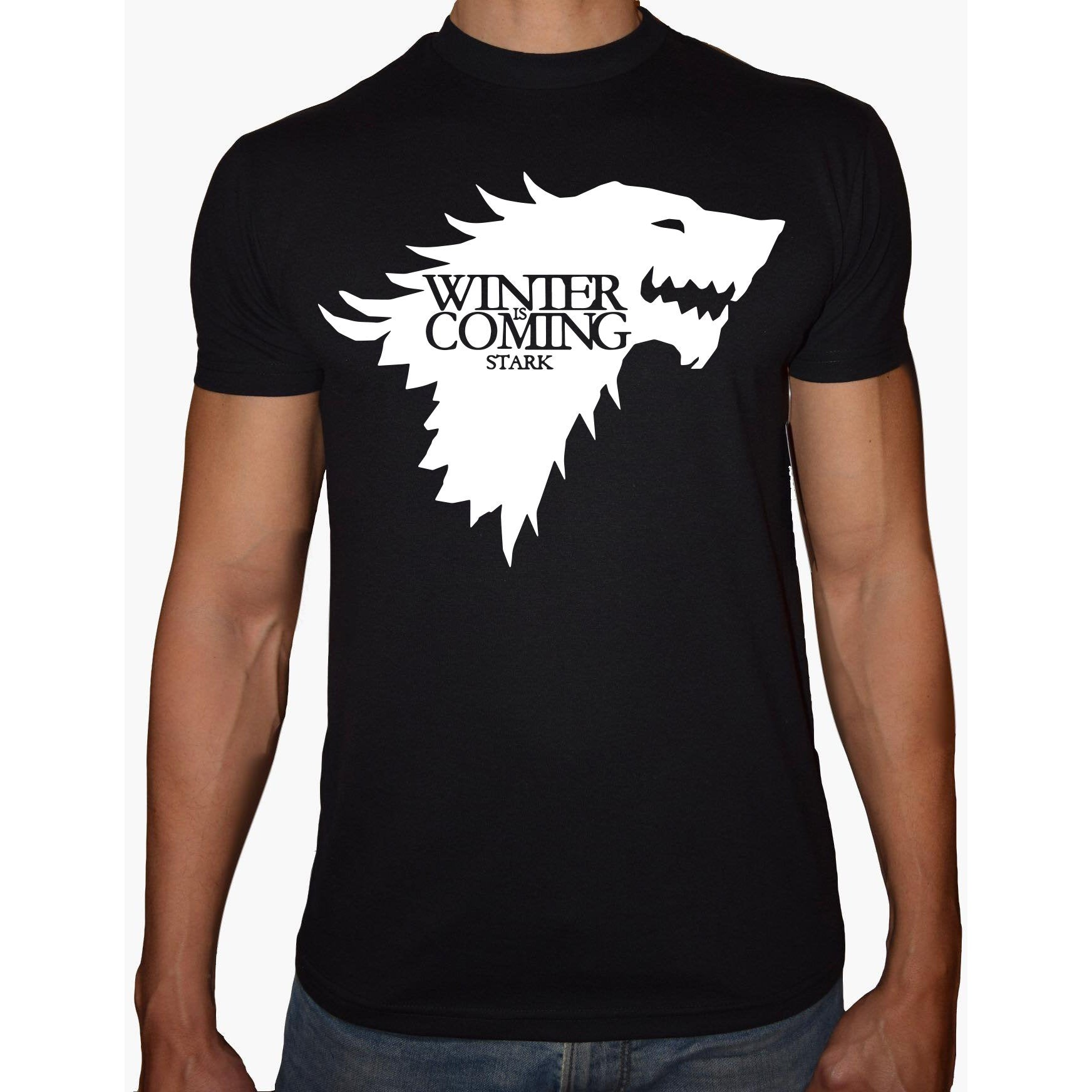 Phoenix BLACK Round Neck Printed T-Shirt Men (Game of thrones - Winter is coming)