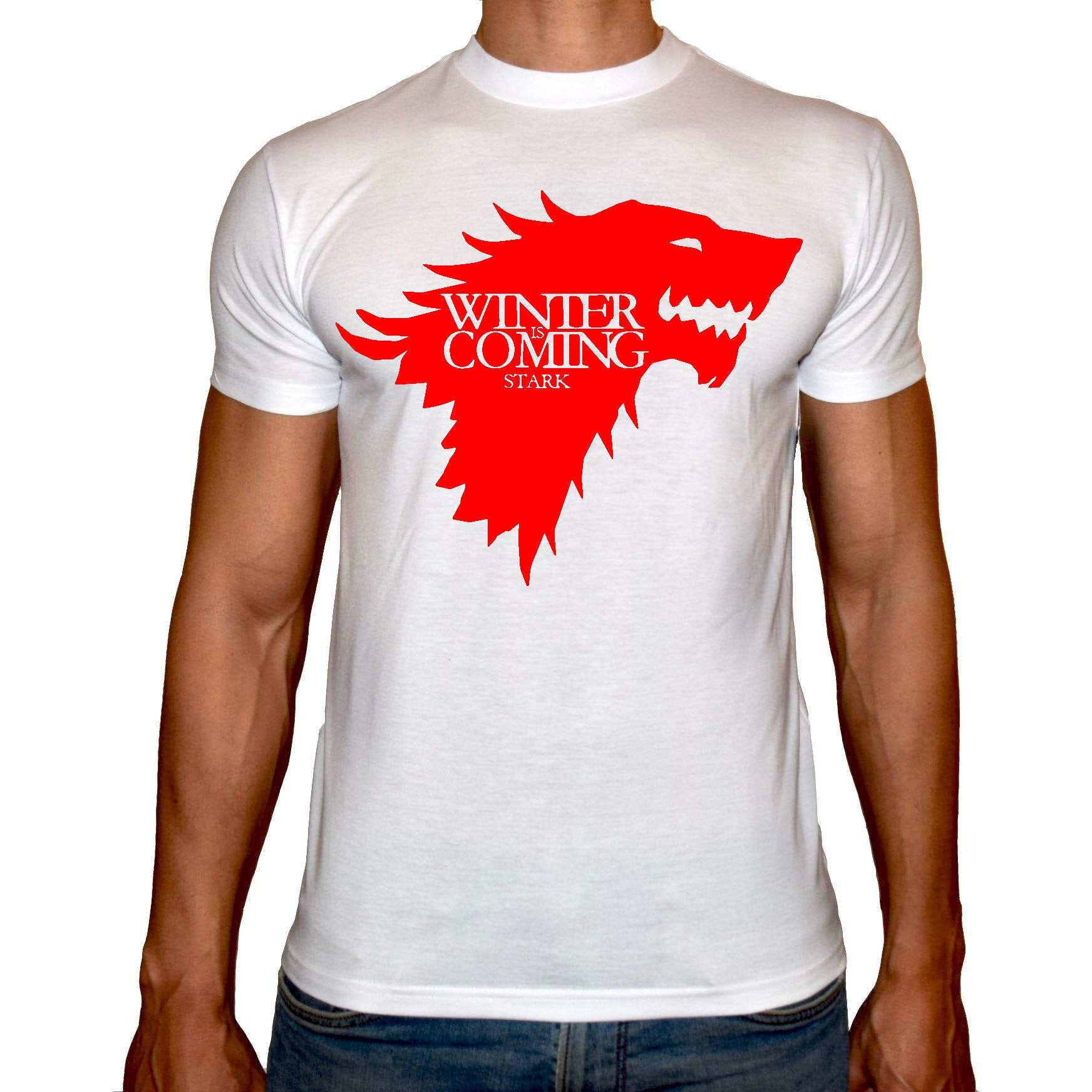 Phoenix WHITE Round Neck Printed T-Shirt Men (Game of thrones - Winter is coming)