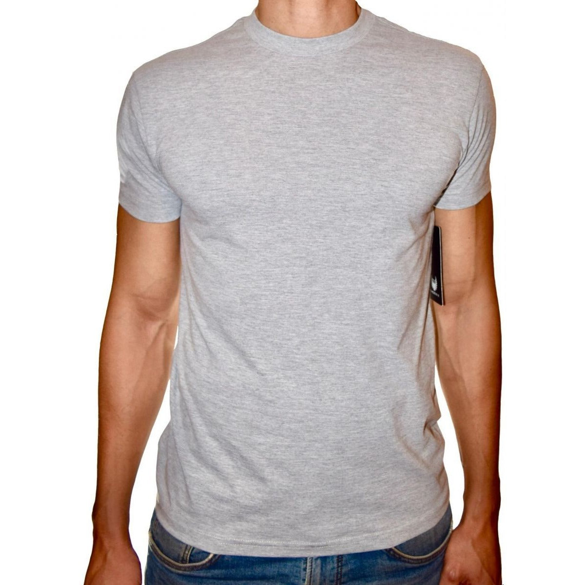 PHOENIX Basic Grey Round Neck T-Shirt For Men