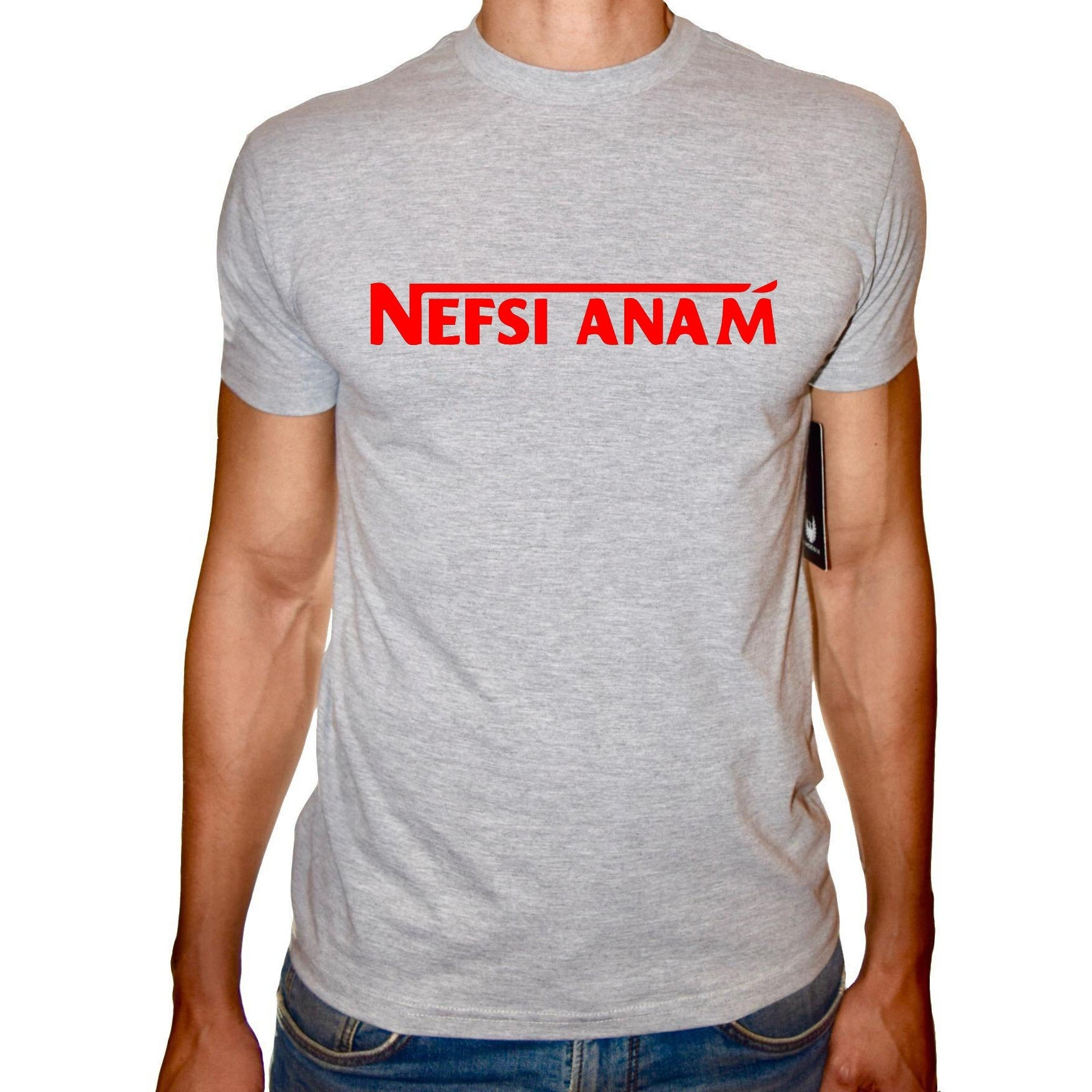 Phoenix GREY Round Neck Printed T-Shirt Men(nefsi anam)