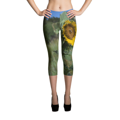 Garden of the Gods Sunflower Capri Leggings