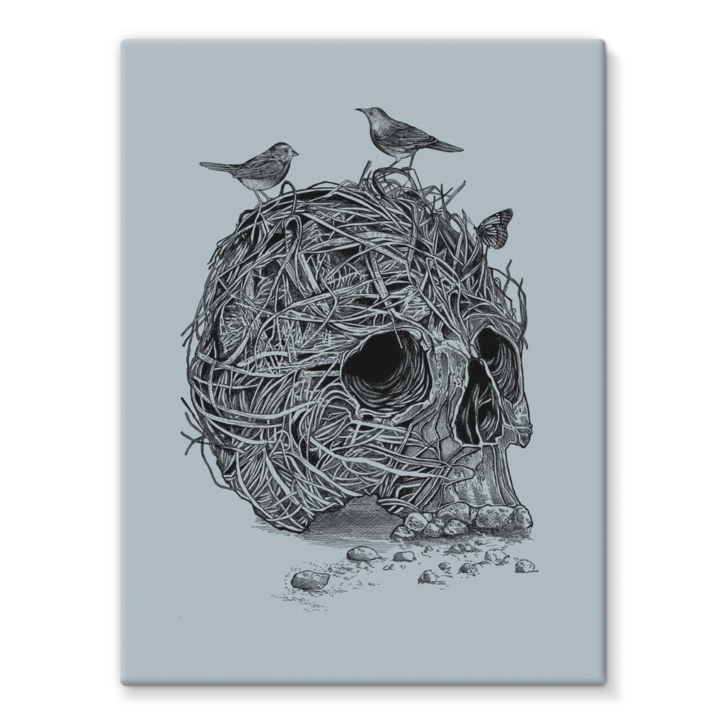 Skull & Birds Stretched Canvas (4 Sizes)