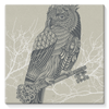 King Owl on Key Stretched Eco-Canvas-Wall Decor- Space & Shape