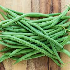 Top Crop - Bush Bean