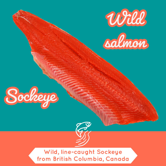 ALL YOU NEED TO KNOW ABOUT WILD SOCKEYE SALMON