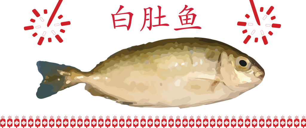 CHINESE NEW YEAR FISH A.K.A. RABBIT FISH (白肚鱼)