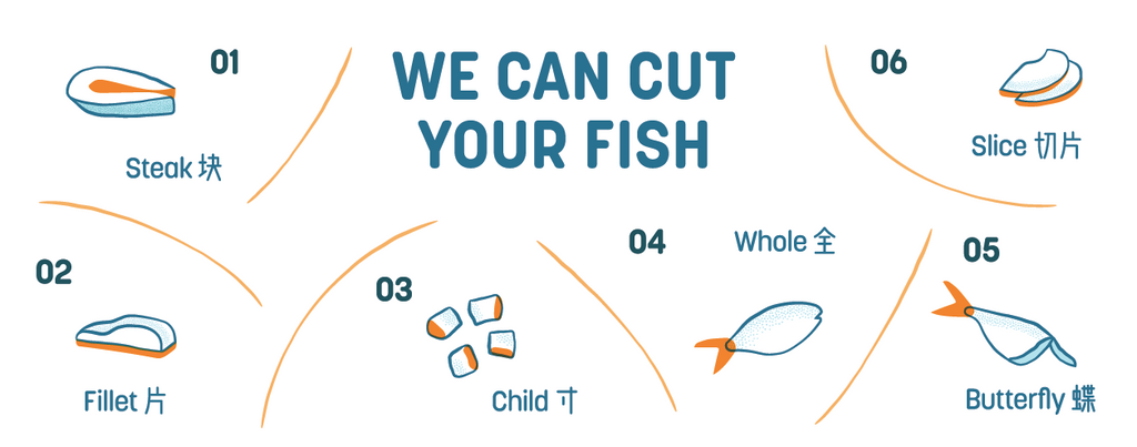 Dishthefish The New Age Fishmonger Pacific Halibut Fresh Fish Seafood Online Delivery Sustainable Wild Caught Responsibly Harvested Line Caught Vancouver British Columbia Canada Fillet Boneless Child cut Steam Grill Bake Fr