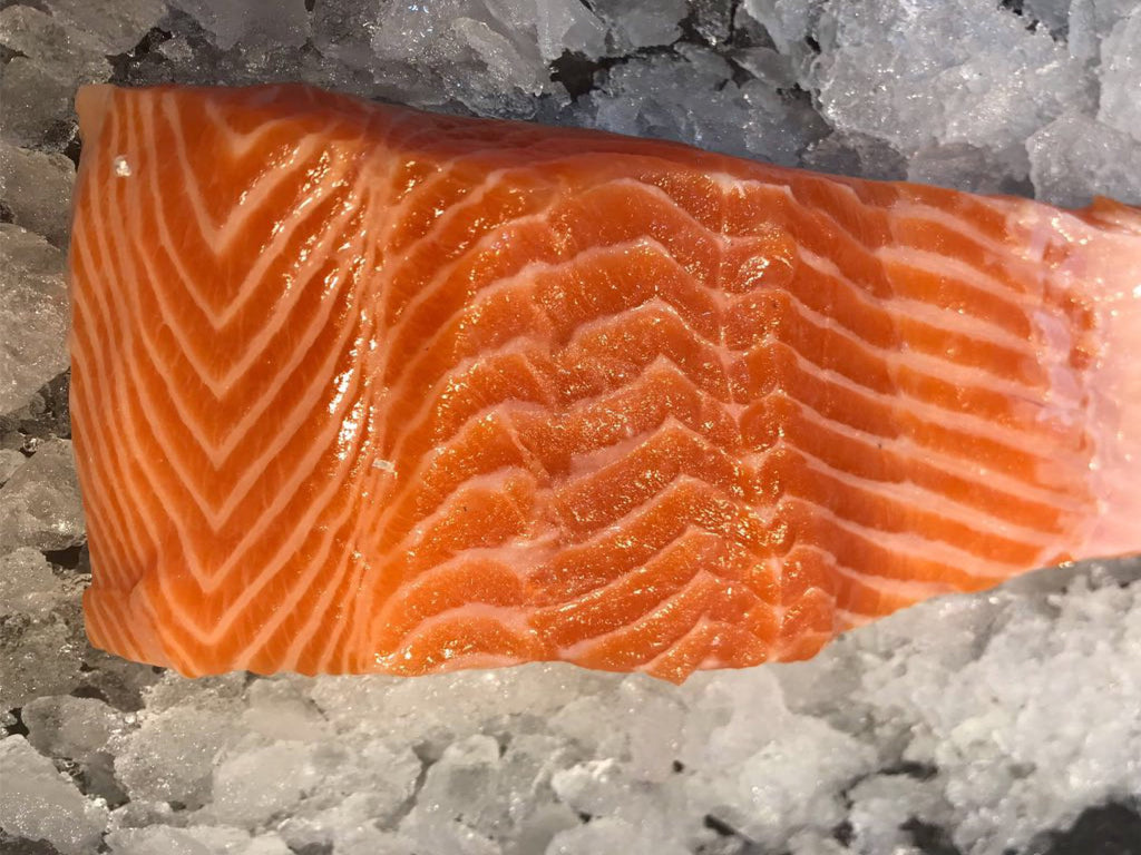 Norwegian Fjord Sustainable Ocean Trout Fillet (about 250g) - Dishthefish
