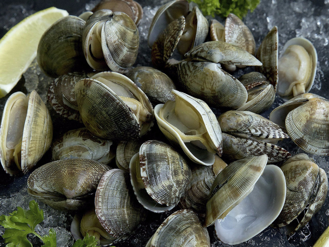 **Wild** Frozen Littleneck Clams - 500g