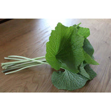 Load image into Gallery viewer, Fresh Wasabi Stems