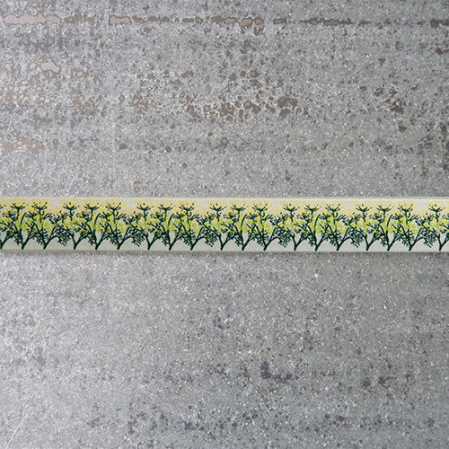 LFNT Ribbon : Dill on Cream