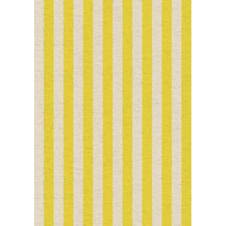 Cotton + Steel : Rifle Paper Co. Primavera - Cabana Yellow Stripe Canvas