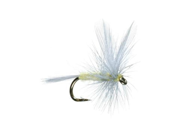 Pale Morning Dun PMD Classic Dry Fly - Hook Size 14