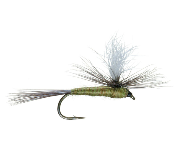 Blue Wing Olive BWO Parachute Dry Fly - Hook Size 14