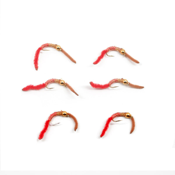 San Juan Worm Power Bead 1/2 Dozen Gold Bead Brown and Red V-Rib  - Set of 6 Nymph Wet Flies