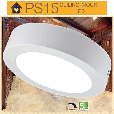 PS15 LED Ceiling Mount Light