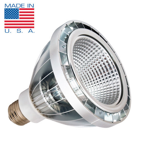 Illinois PAR30 LED Light Bulb