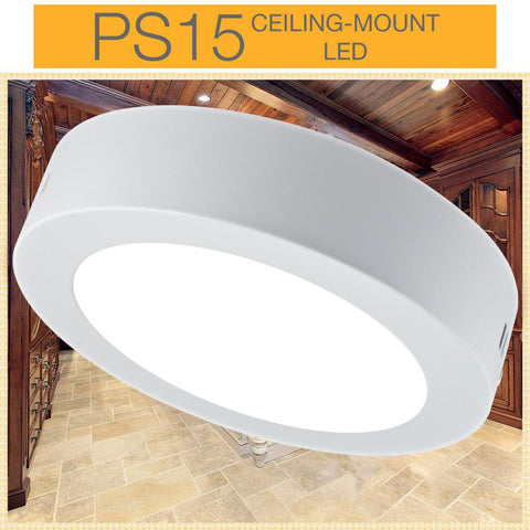 "PS15 6"" LED Ceiling Mount Light"