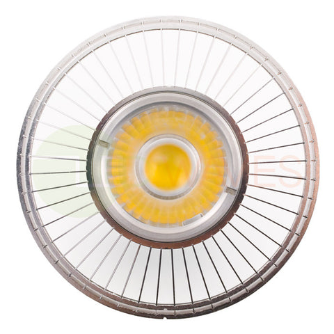 Massachusetts PAR36 LED Light Bulb
