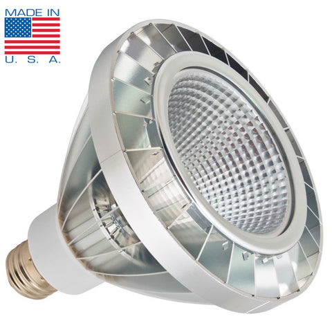 New York 3.0 PAR38 LED Light Bulb