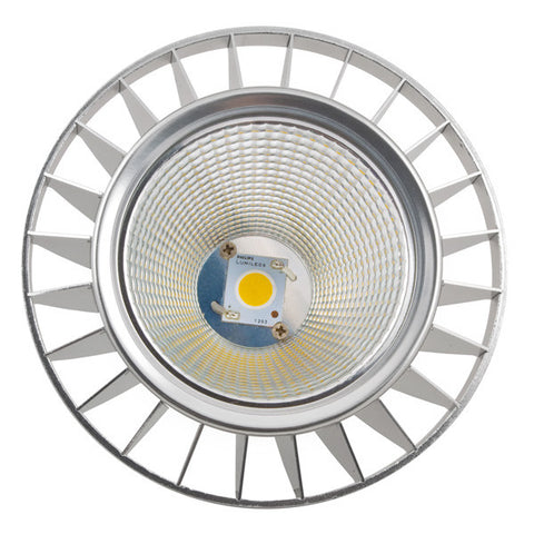New York 3.0 PAR38 Dimmable LED Light Bulb