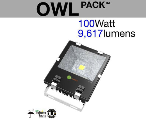 OWL Pack™ Outdoor LED Flood Light (100 Watt)