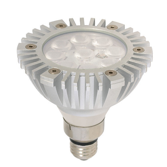 Arcadia Outdoor PAR38 LED Light Bulb