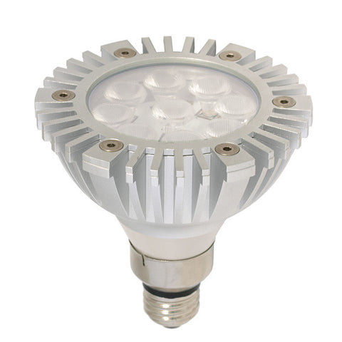 Arcadia Outdoor PAR38 LED Light Bulb (clearance)