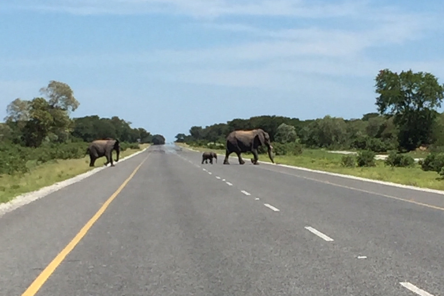 Elephants & Waterfalls: The Road from Gaborone to #JVFC