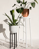 "Black 8"" Planter Stand - Hesby"