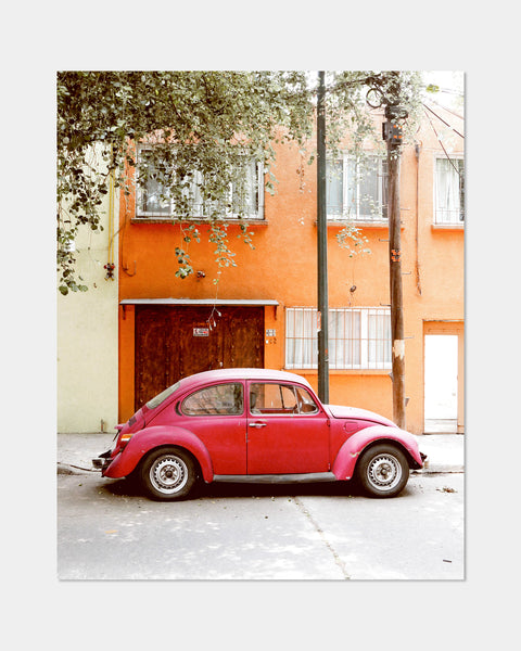 Red Bug Print - Hesby