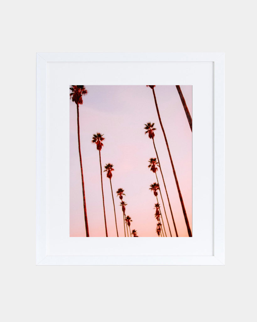 Blurred Palms Print - Hesby