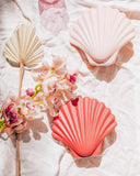 Sea Shell Vase - Hesby