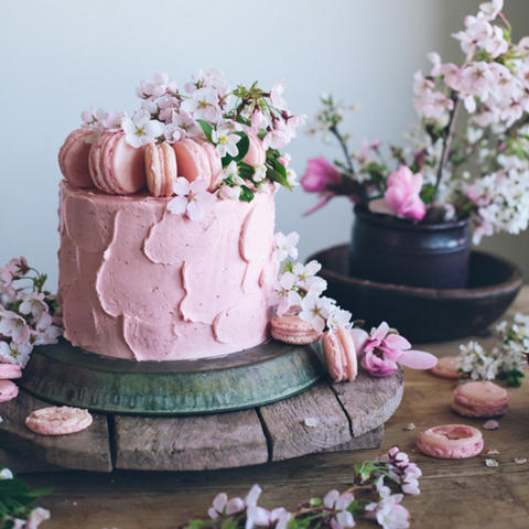 macaron pink cake for spring recipe rockymoutaindecals.ca