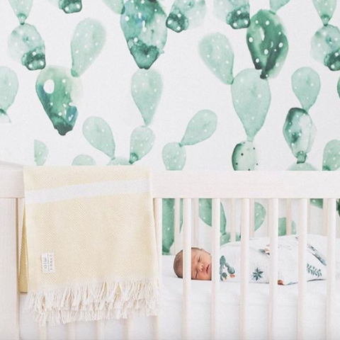 Cactus Wallpaper, Baby Girl Wall Decor, Baby Boy Nursery Decor, Kids Wallpaper