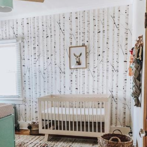 Birch wallpaper for baby nursery ideas