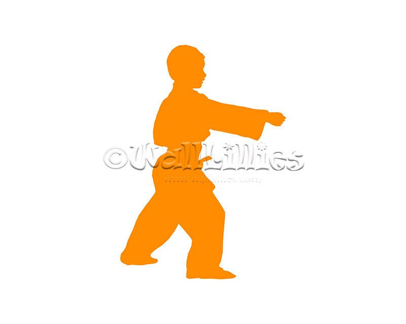 Boy Karate Moves I Decal - WallLillies