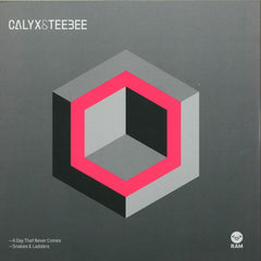 "Calyx & Teebee - A Day That Never Comes 12"" RAM Records RAMM181"