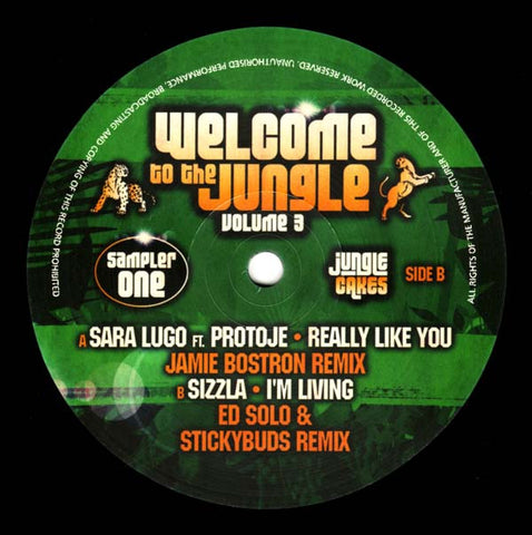 Sara Lugo / Sizzla ‎– Welcome To The Jungle Volume 3 Sampler One - Jungle Cakes ‎– JC 042