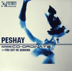 "Peshay Featuring Co-Ordinate - You Got Me Burning / Fuzion 12"" Cubik Music Productions CUBIKSAMP001"