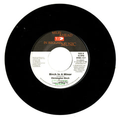 "Rik Rok, Christopher Birch - Shake It / Birch In A Mirror 7"" BYMG1017 VP Records"