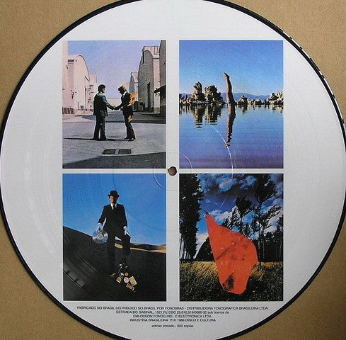 Pink Floyd Wish You Were Here 12 Quot Picture Disc