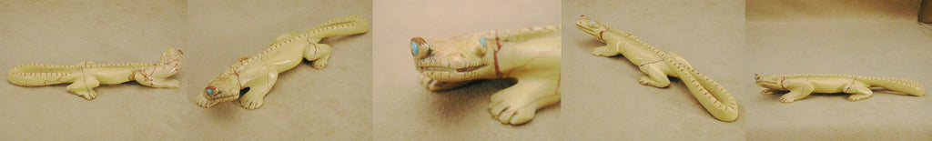 Picture Jasper Lizard by Lance Cheama