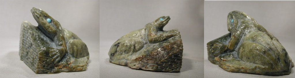 Serpentine Frog by Herbert Him