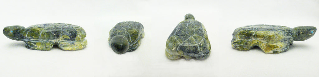 Serpentine Turtle by Jimmy Yawakia