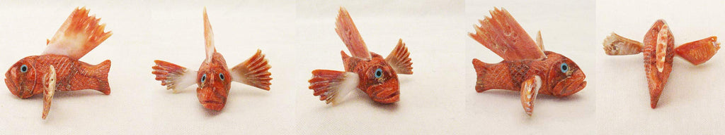 Apple Coral / Spiny Oyster Fish, Clown Fish by Hudson Sandy
