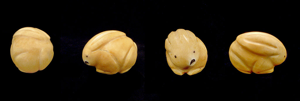 Tagua Nut Rabbit by Melissa Quam