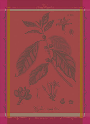 Café Botanique (Coffee Plant), Fuchsia Kitchen / Tea Towel